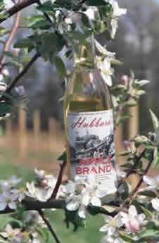 Hubbard's Brandy